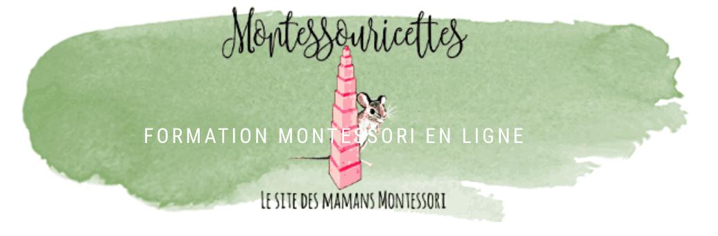 catalogue des formations à distance sur la Pédagogie Montessori des Montessouricettes